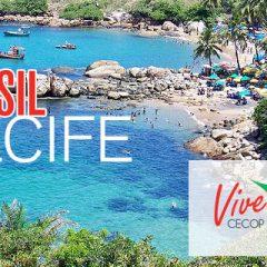 Imagem da notícia: Brasil, próximo destino do ViveCECOP