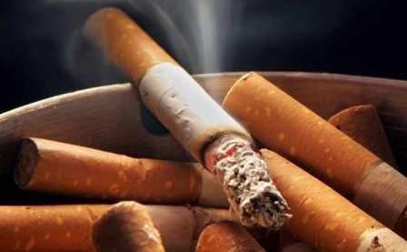 Imagem da notícia: Fumar danifica o cérebro