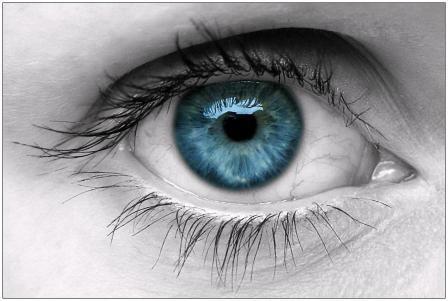 Imagem da notícia: ANO promove rastreio à visão na Assembleia da República