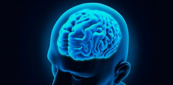 Imagem da notícia: Usar Google aumenta risco de demência?