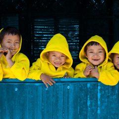 Imagem da notícia: CECOP faz doação à UNICEF