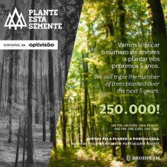 """Imagem da notícia: Primóptica apresenta iniciativa """"Plante esta semente"""""""