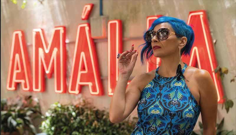 Imagem da notícia: Lançamento oficial da linha Amália Eyewear: assista online!