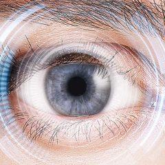 Imagem da notícia: Reino Unido: optometristas e oftalmologistas unem-se em prol da saúde visual