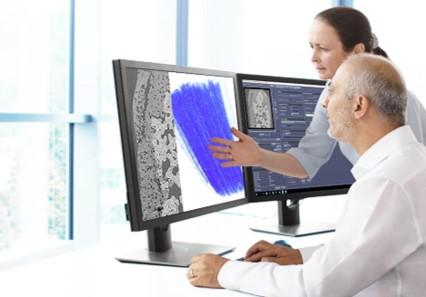 Imagem da notícia: Zeiss usa a inteligência artificial em microscópios de raios-x 3D